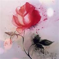 Rosescu Daniela Iuliana