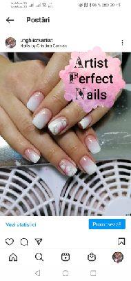 Artist Perfect Nails