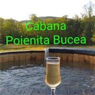 Cabana Poienita