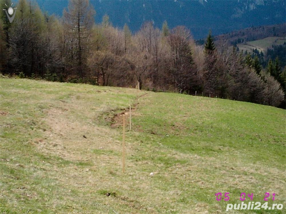Vanzare  terenuri constructii  2876 mp Brasov, Poiana Marului  - 54644 EURO