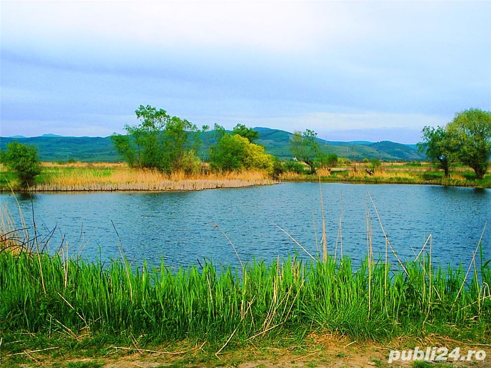 Teren la balta Balata și râul Mureș (variante schimb cu autoturism) de vânzare