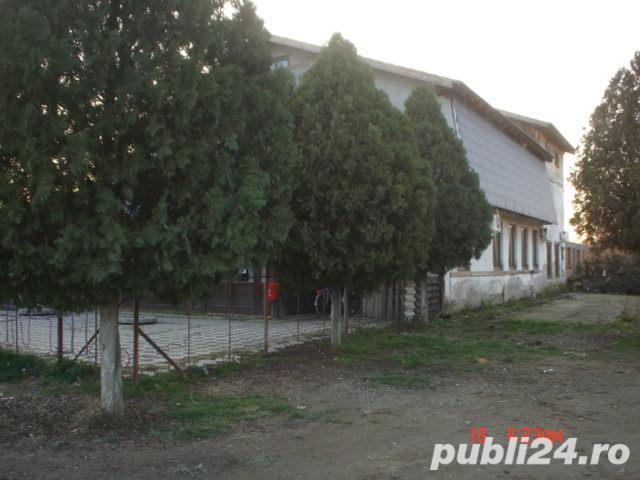 Vanzare  casa  18 camere Timis, Hitias  - 70 EURO
