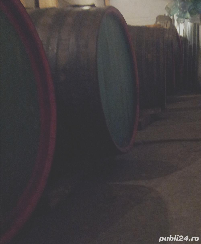 Imbogatestete rapid din afaceri cu vinuri,padure,agricultura si traieste sanatos la tara pan-la 150