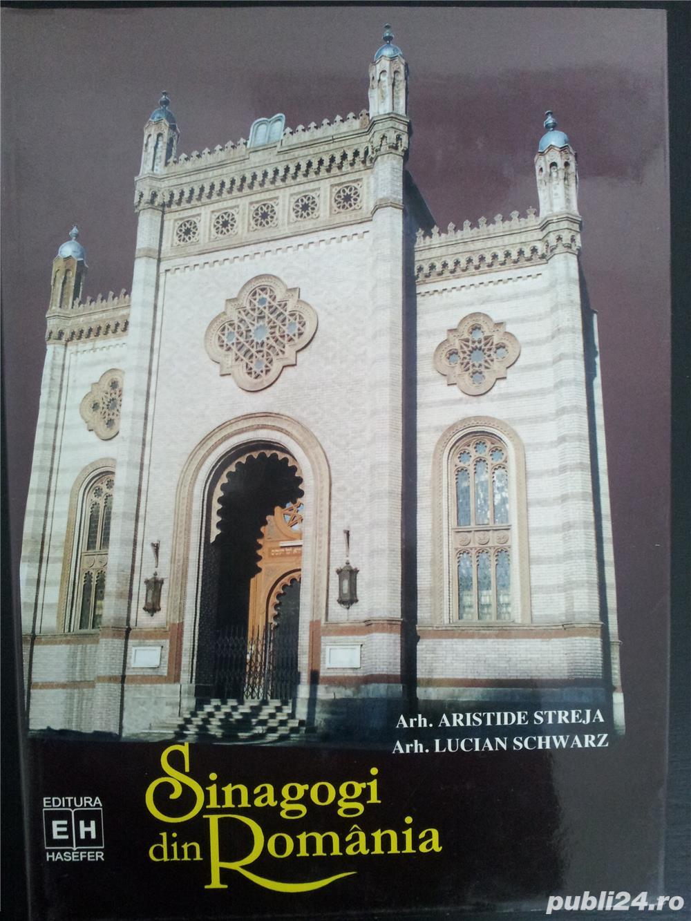 Sinagogi din Romania.(Aristide Streja, Lucian Schwrtz).