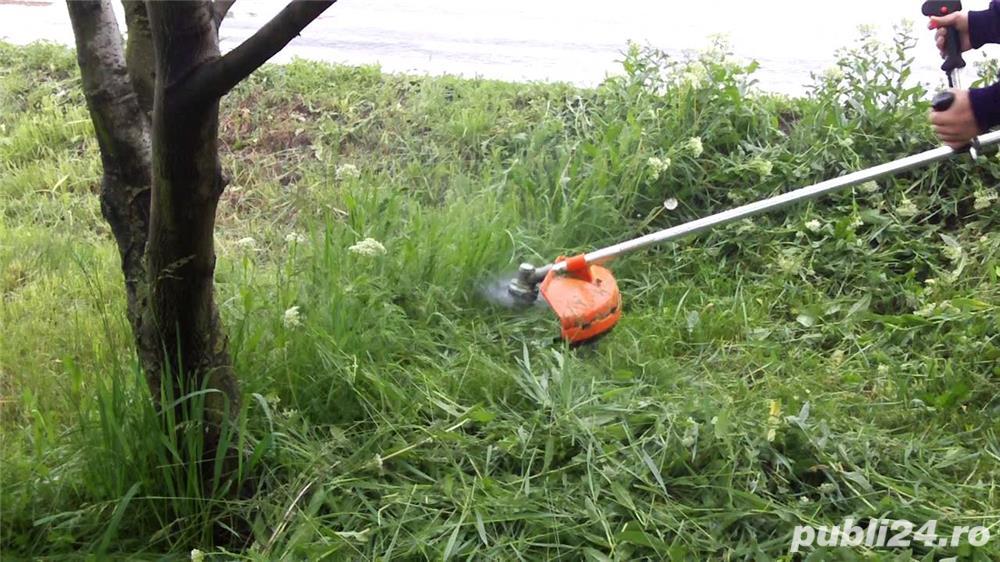 Tund iarba,gazonul cu motocoasa 1leu / mp