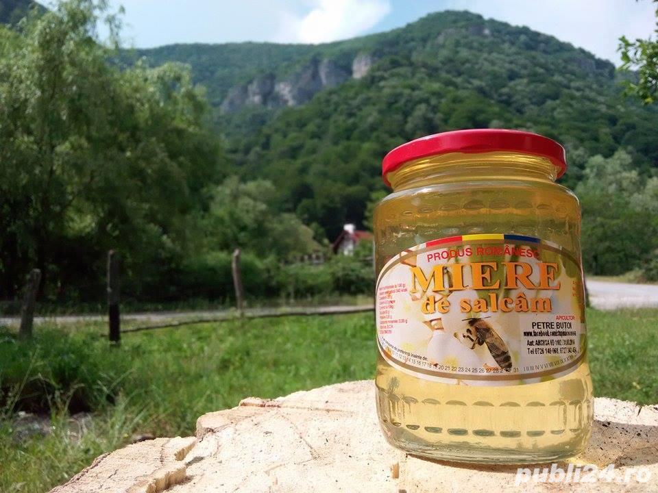 Miere albine naturala de salcam (produse naturiste miere)