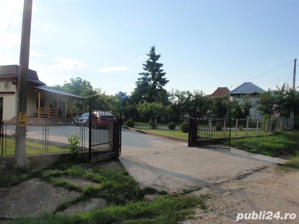 (105) Casa cu livada, Hintesti, Dealul Viilor, jud. Arges