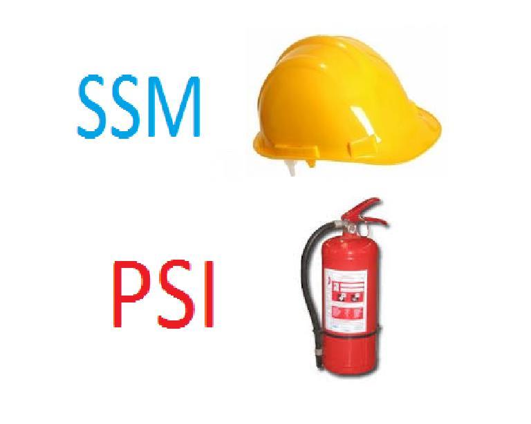 Protectia muncii SSM PSI SU Coordonator santier SSM Evaluator SSM