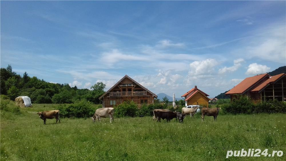 "Cazare Ferma agroturistica ""Floare de Maces"" pensiune hotel Brasov Predeal Rasnov Bran Moeciu"