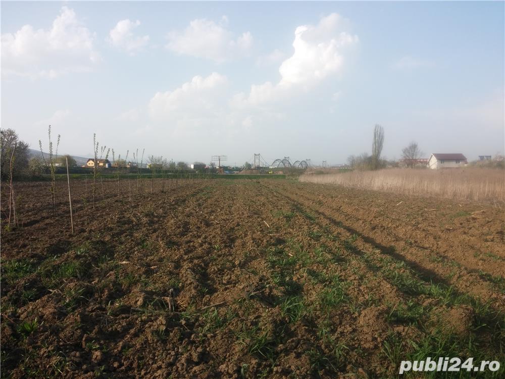 Vand teren intravilan In Oarda - Alba Iulia