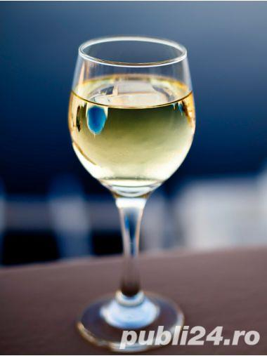 Vin alb si vin rosu de vita nobila