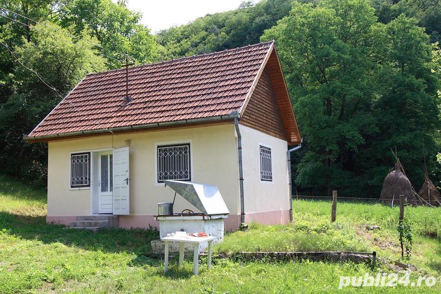Vand casa la munte, jud Hunedoara