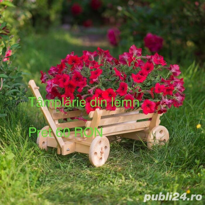 Caruta flori
