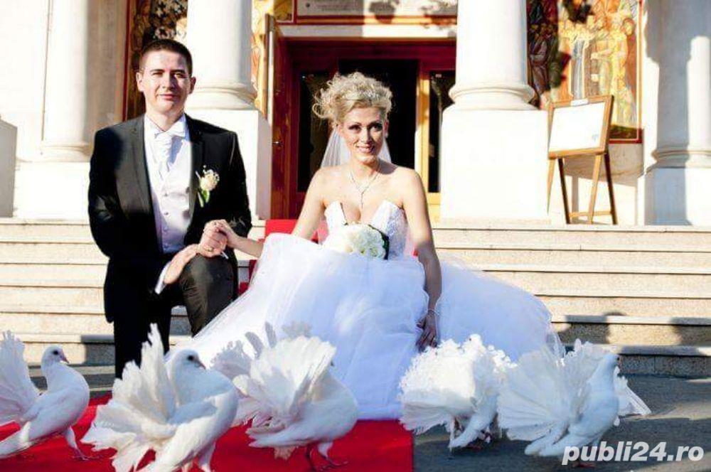 Porumbei pentru nunti  botezuri evenimente speciale din viata dumneavoastra