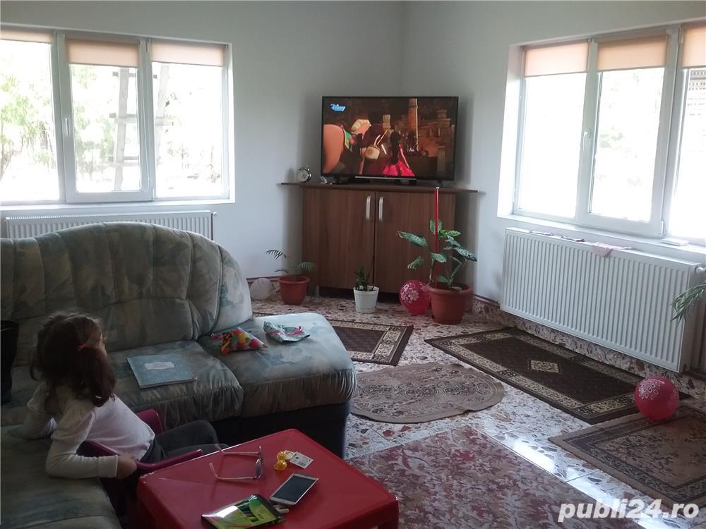 Vanzare  casa  4 camere Timis, Peciu Nou  - 85 EURO