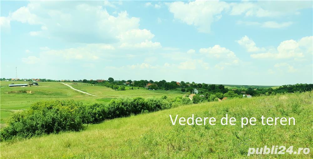 Vanzare  terenuri agricol  10.5 ha Timis, Cornesti  - 147000 EURO