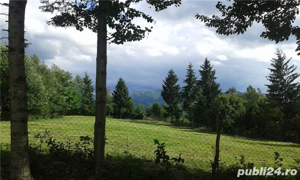Vanzare  terenuri agricol  41 mp Maramures, Viseu de Sus  - 246 EURO