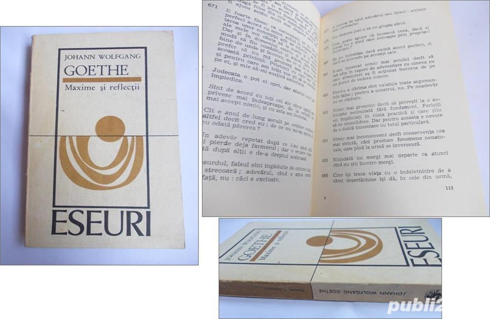 Goethe - Maxime si reflectii