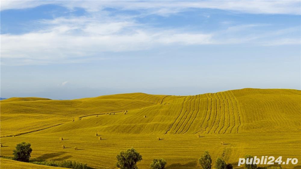 cumpar teren arabil 2000-4000 euro ha oriunde jud. vaslui