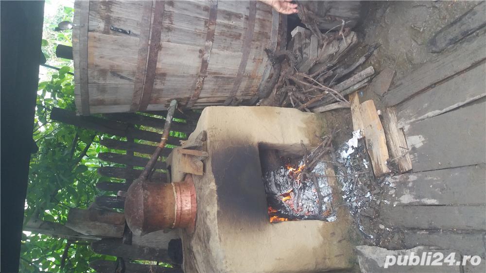 țuică de tescovina si vin natural