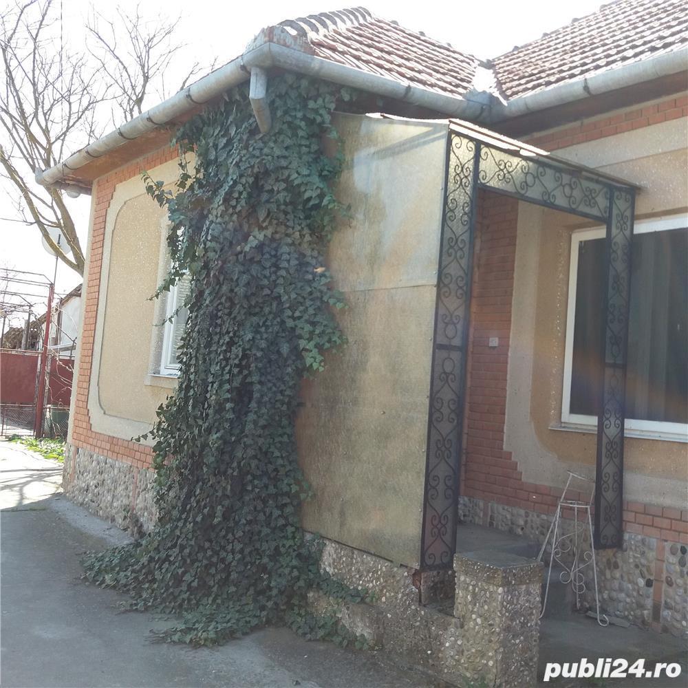 Vanzare  casa  5 camere Timis, Cenad  - 37 EURO