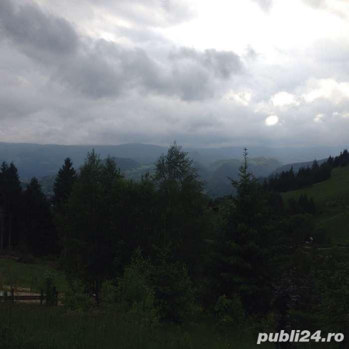 Vanzare  terenuri constructii  2000 mp Brasov, Rucar  - 8000 EURO
