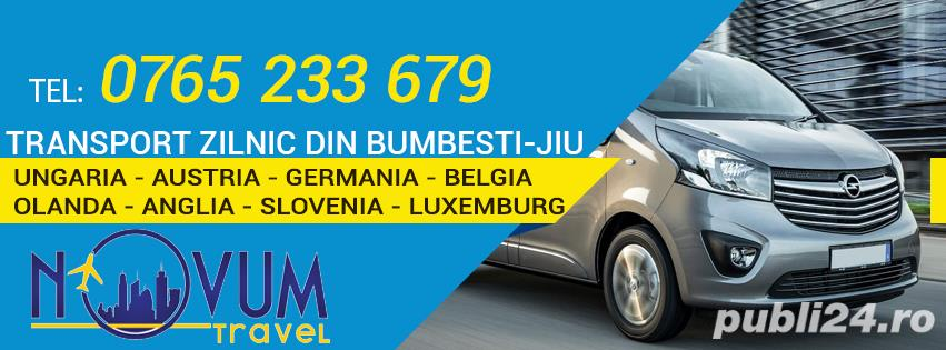 Transport Bumbesti Ungaria Austria Germania Belgia Olanda Anglia Slovenia Slovacia Elvetia Luxemburg