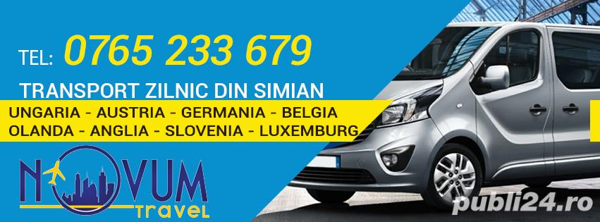 Transport Simian Ungaria Austria Germania Belgia Olanda Anglia Slovenia Slovacia Elvetia Luxemburg