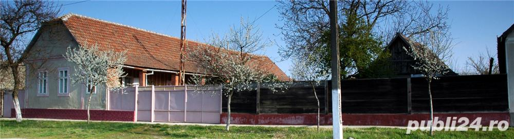 Casa Arad Vinga nr795 30mx80m