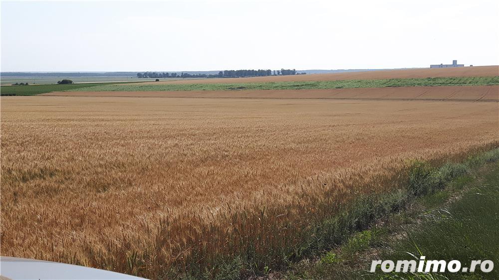 Vând teren agricol cu puț forat pt.irigat
