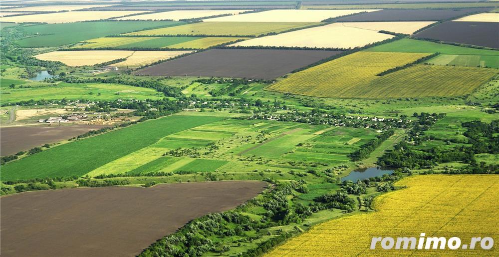 Companie ia in arenda teren agricol ECO - Iasi, Vaslui, Galati, Botosani