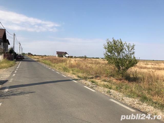 Teren intravilan 2 x 700 mp Domnesti, Unitatea Militara, Ciocarliei