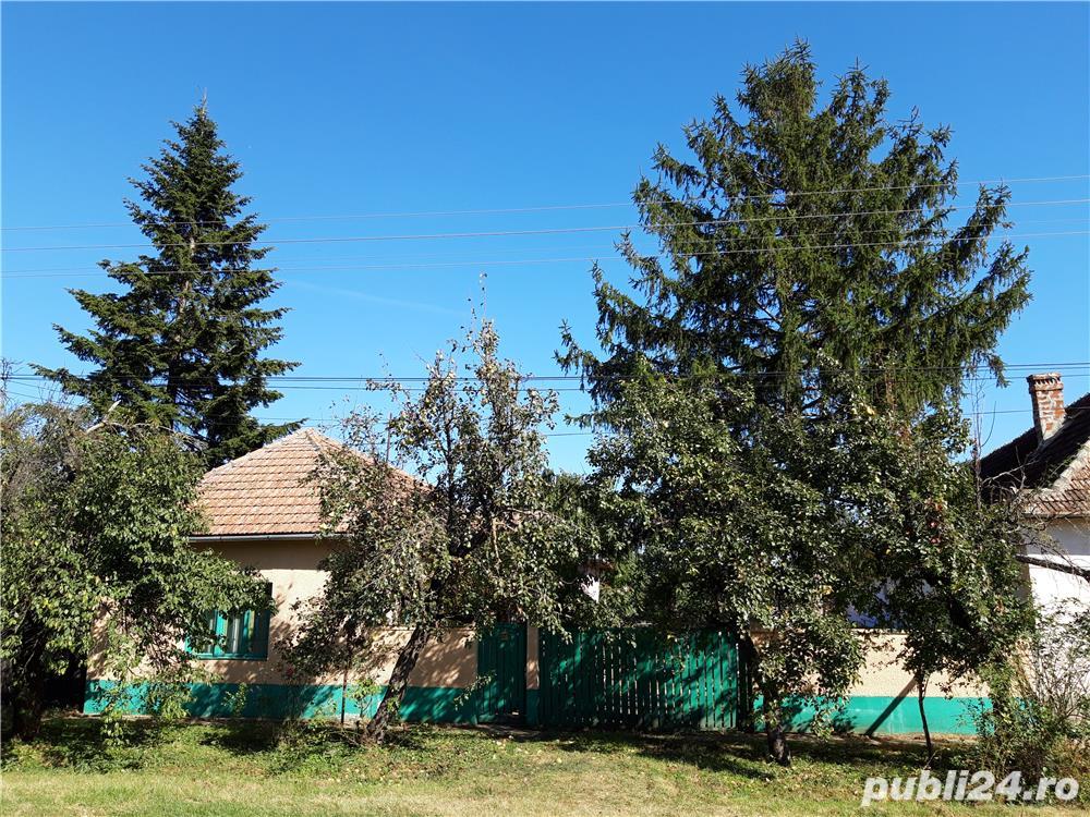 Vând casă în satul Mailat,comuna Vinga,județul Arad