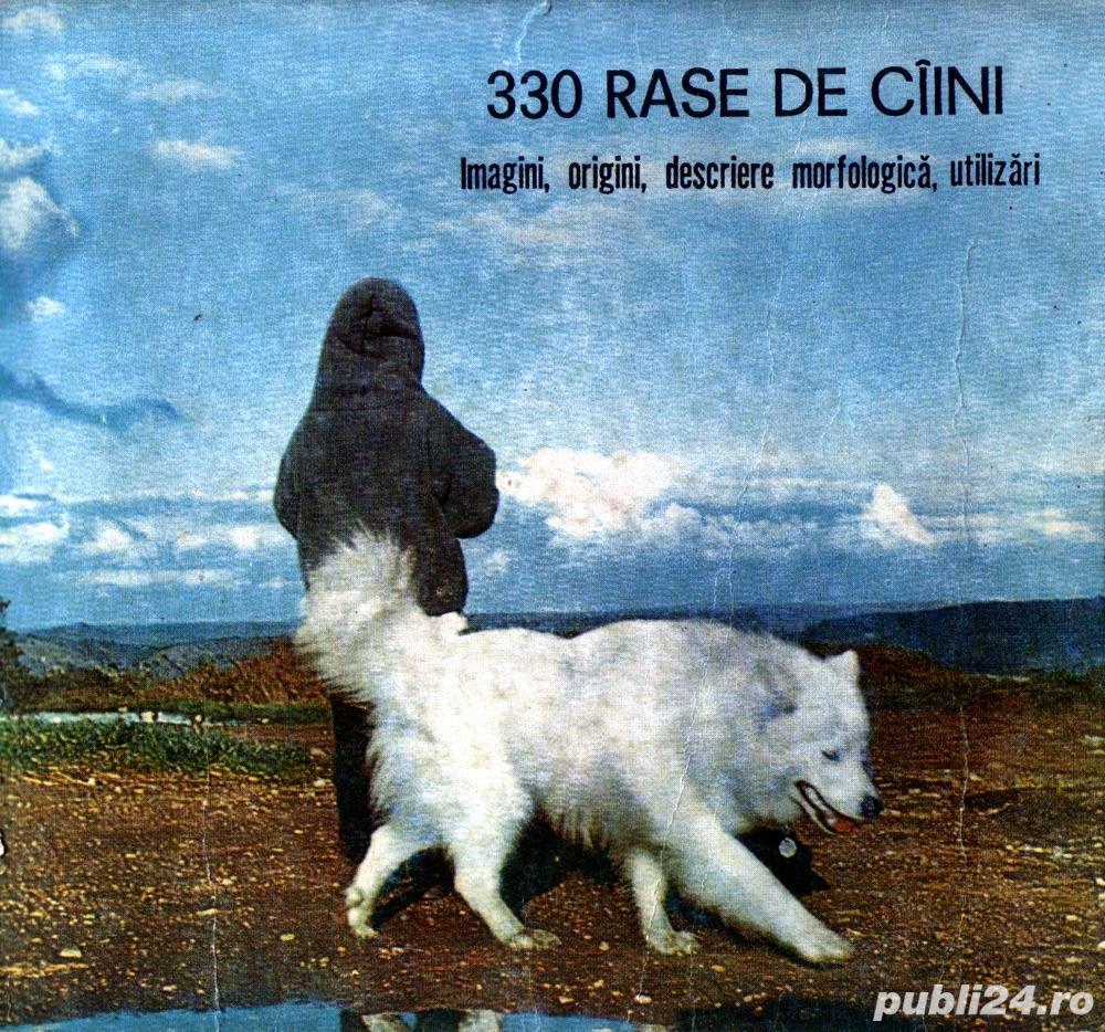 330 rase de câini Imagini, origini, descriere morfologică, utilizări
