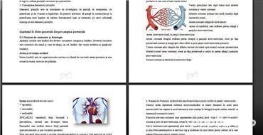 Lucrari Licenta,Mastere,Doctorate,Disertatii,Economie,IT,AMG,Farmacie,Asistenti Medicali Generalisti