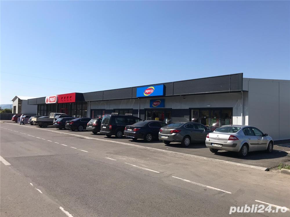 Vanzare Centru Comercial in Stei in BITCOIN-integral inchiriat