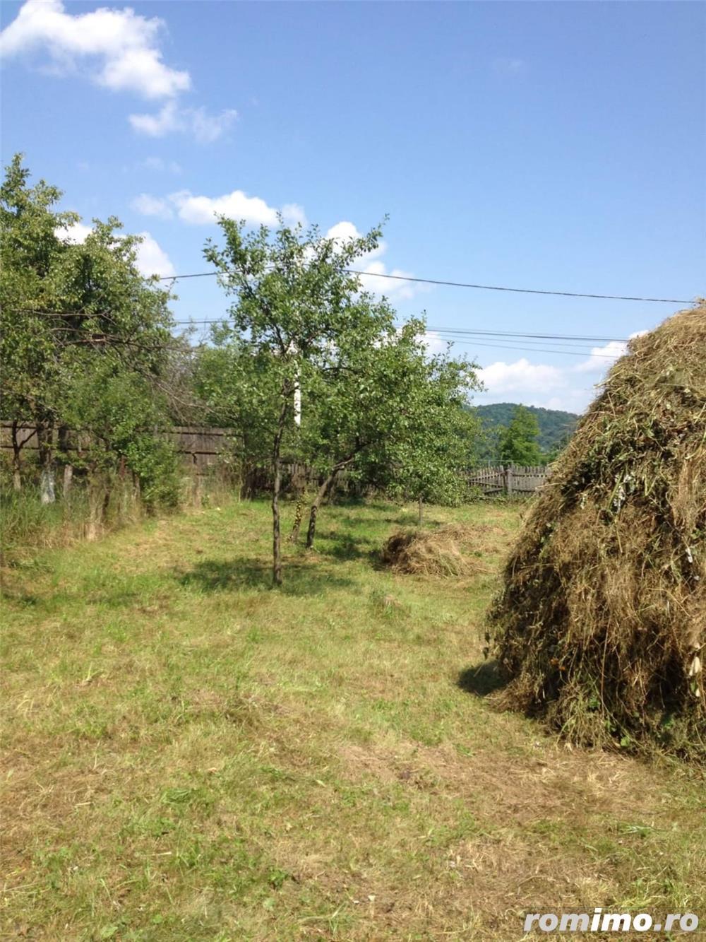 Vând teren Albești Argeș