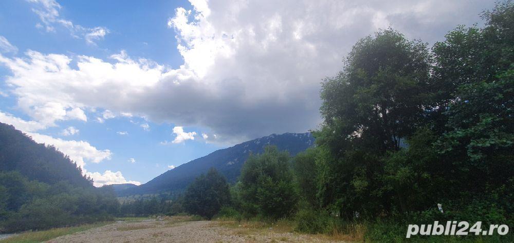 teren Zărnești