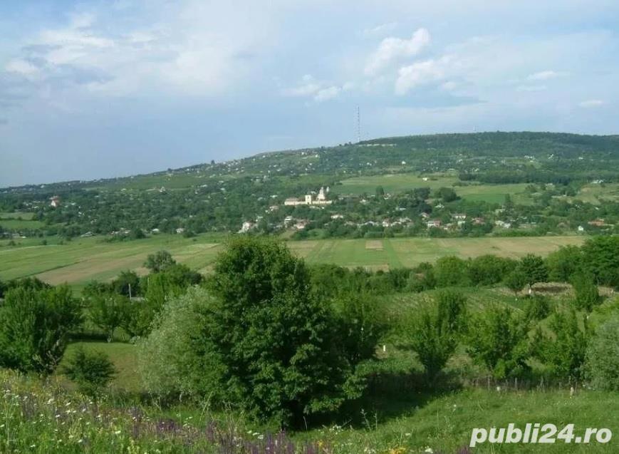 Teren 1900mp sat Todirel, Barnova