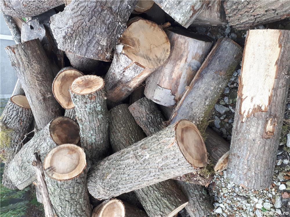 Tăiem, crapam si aranjam lemne de foc