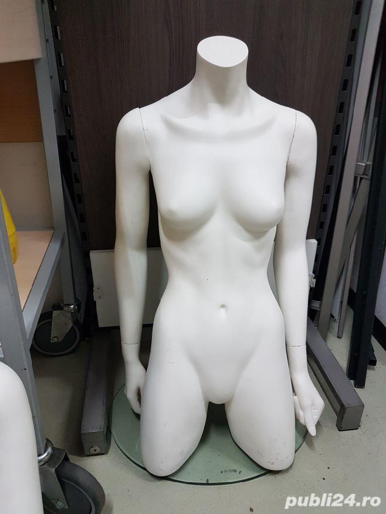 manechin dama/ bust