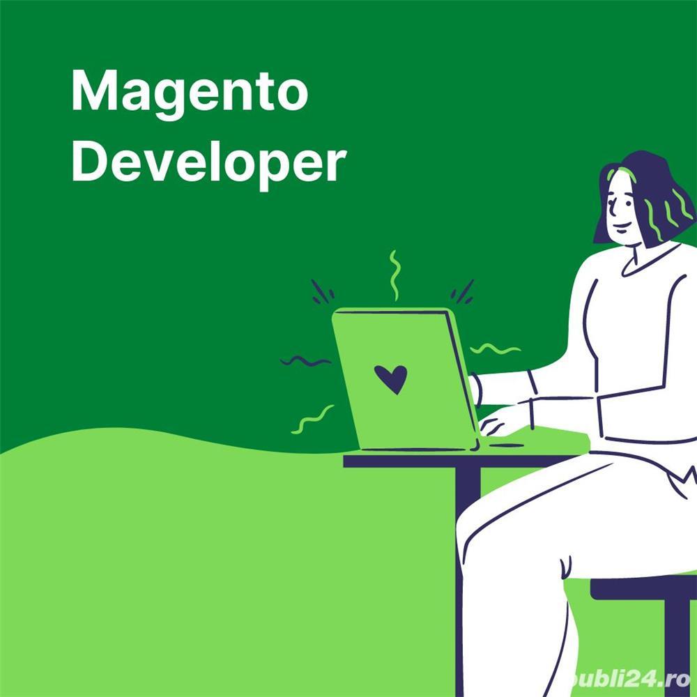 Programator Magento