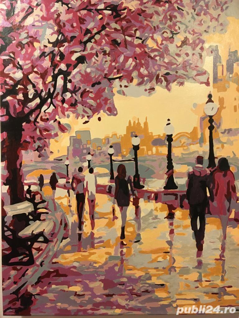 Tablou Plimbare in orașul îndrăgostiților Paris
