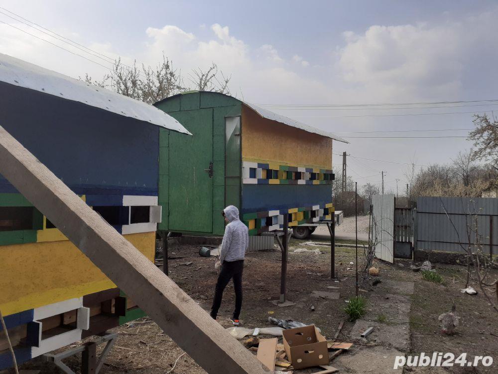 Pavilioane apicole