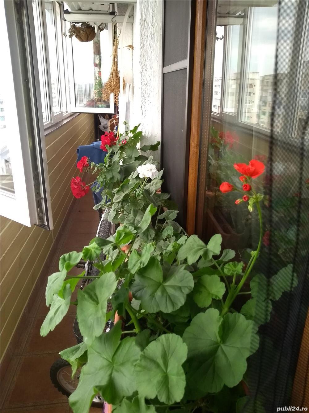 Apartament 3 camere decomandate, bulevardul G. Enescu.