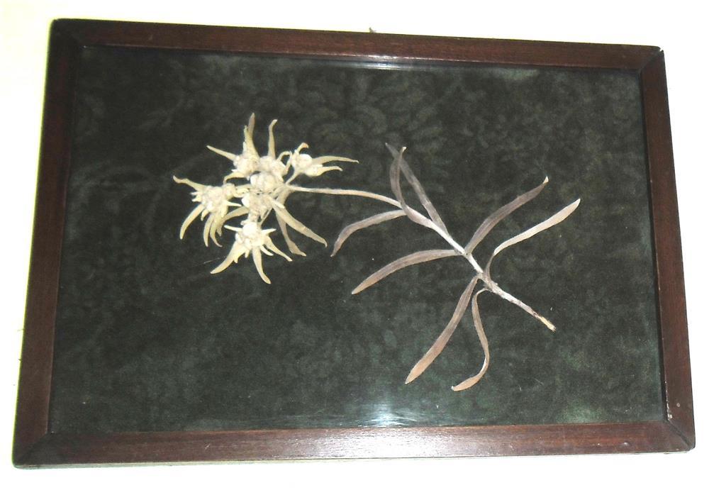 Floare de colț înrămată
