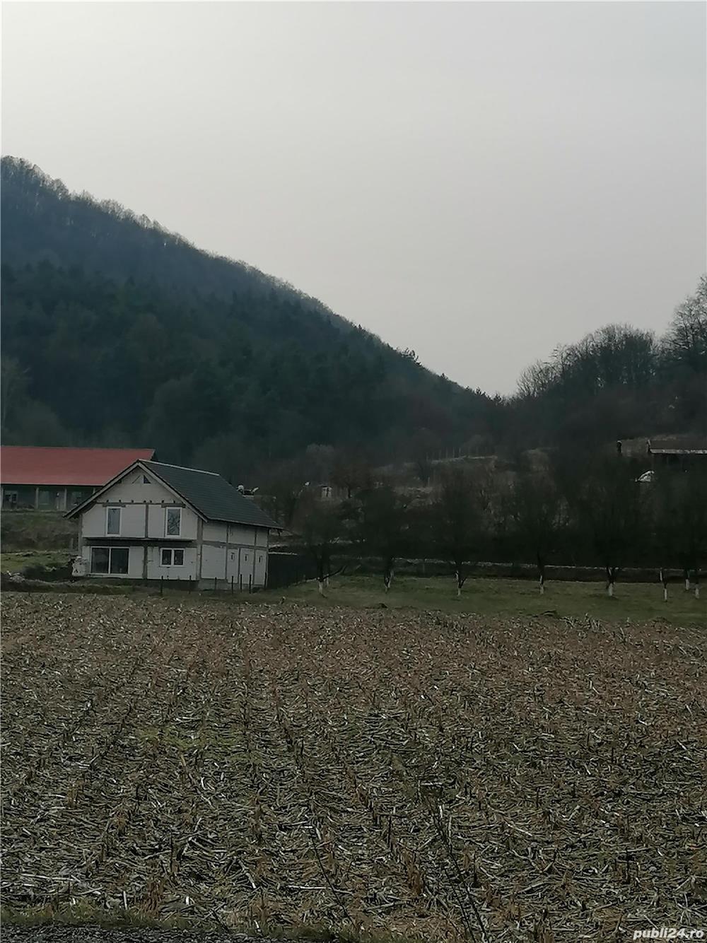 Vând teren Lesnic