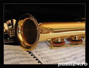 Lectii Saxofon incepatori - imagine 1