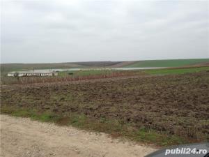 Schimb, variante, vind sau inchiriez superb  lac de pescuit in Olt 35 ha - imagine 2