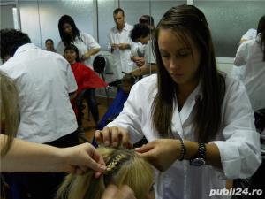 Curs frizer braila